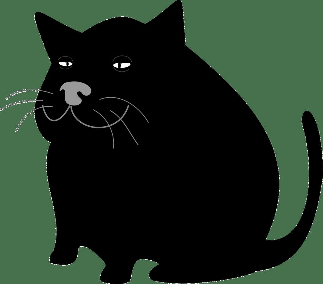 cat 48506 1280
